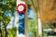 Park City Historical Society ribbon